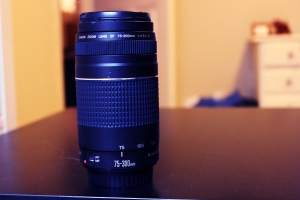 A Canon 75-300mm Telephoto Lens provides nice distance or a boost in perspective for landscape shots.
